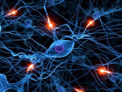Попасть в нейросети: как технология помогает ритейлерам увеличивать продажи