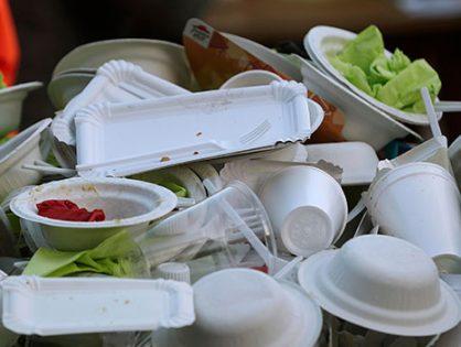 Правительство предложило ввести экологический сбор на одноразовую посуду